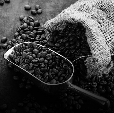 Cover Colombian coffee production falls 11% in August